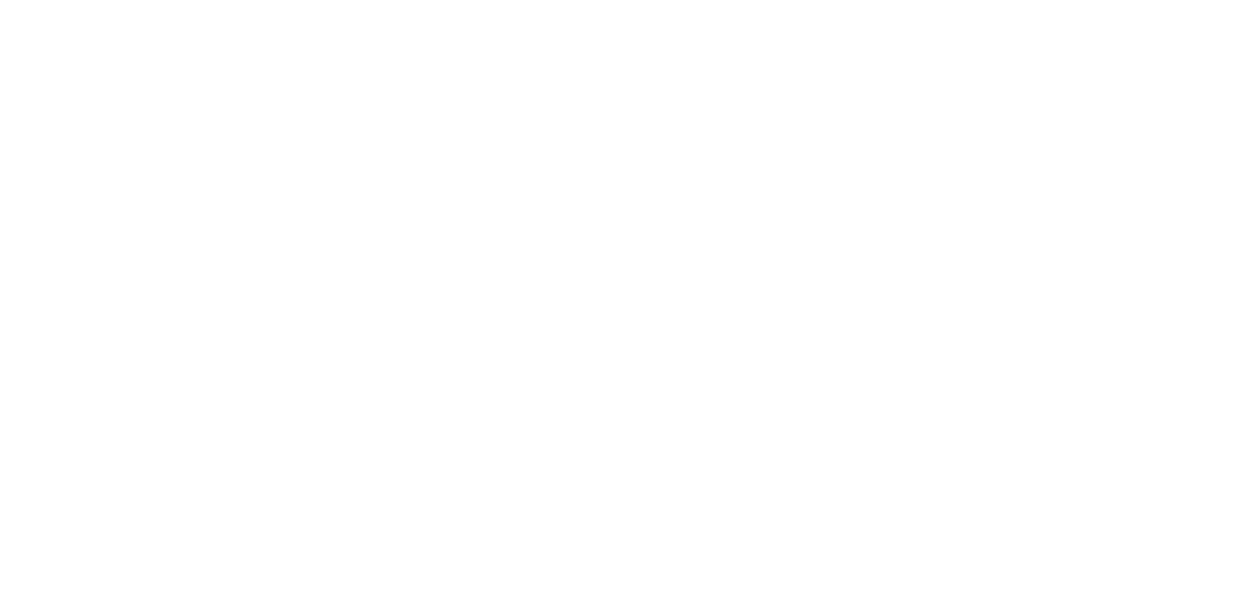 Triplink Reverse Horizontal Logo